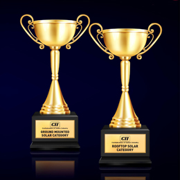 Performance Excellence Awards in Ground Mounted and Rooftop Solar Category - December, 2020